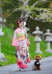 成人式写真:和装:女性:トイプードルと一緒に。神社境内