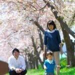 家族・赤ちゃん。桜の樹の下で