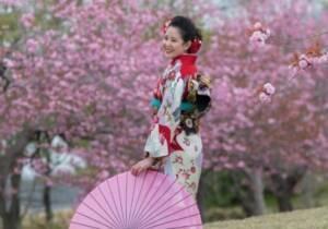 成人記念写真:桜の樹の下で。前撮りです