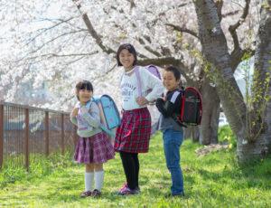 仲良しきょうだい3人。桜の下で入学写真
