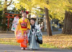 七五三。姉と弟。亀田八幡宮の紅葉の季節。秋晴れのショット