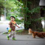 赤ちゃんwith his dogs:亀田八幡宮境内