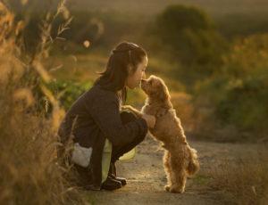 駒ケ岳の少女と愛犬